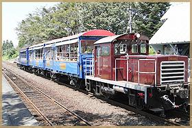 南阿蘇トロッコ列車イメージ