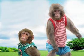 猿回し劇場